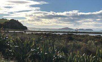 Beautiful Pohutukawa Coast - Half Day Private Tour