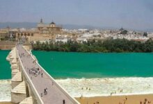 34 92 220x150 - Cordoba private tour from Granada for up to 8 persons including the great Mosque
