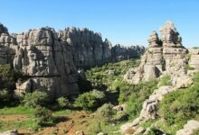 5b 94 220x150 - Private Cordoba City Tour and Day Trip to Antequera