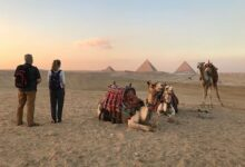 60 86 220x150 - Private Tour Giza Pyramids, Memphis and Sakkara with Camel Ride