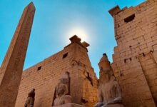 c9 93 220x150 - Luxor & Valley of Kings Full Day Private Tour From Hurghada