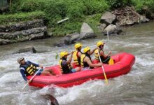 e1 117 220x150 - Half-Day Whitewater Rafting with Ubud Hotel Transfers