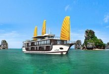 Peony Cruise Ha Long Bay 2 Days 1 Night