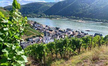 Persönliche Weintouren im Herzen Deutschlands ab der Region Frankfurt - Mainz